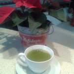 Dnes velmi populární Matcha tea, proč je tak oblíbený?